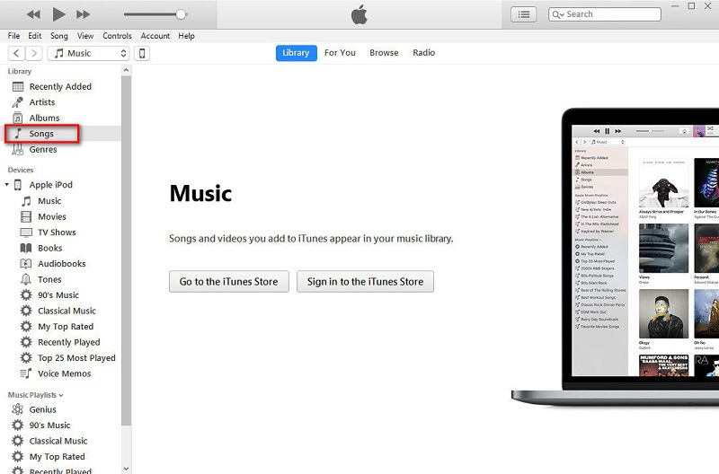 iTunes songs option